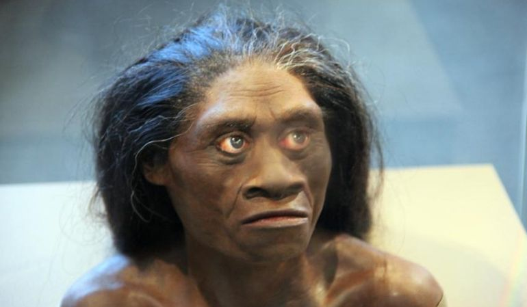 Homo_Floresiensis_Real_Hobbits_Accompanied_Humans_1