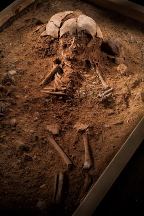 Mysterious_Graves_ 8500-Year Old_European_Cemetery_Gross_Fredenwalde_3