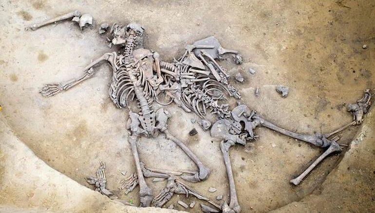 6,000-Year-Massacre_France_Neolithic_Age_1