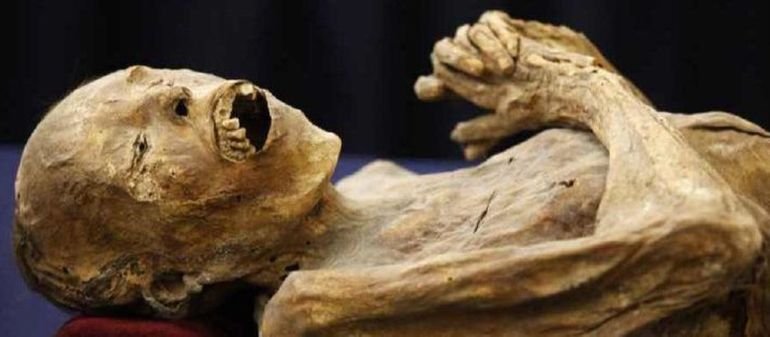 mummification had a brutal side in ancient egypt
