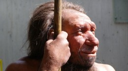 Early_Humans_bred_Neanderthals_Earlier_Previously_Thought_1