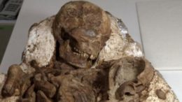4800-Year_Old-Skeleton_Mother_Nursing_Child_Taiwan_1