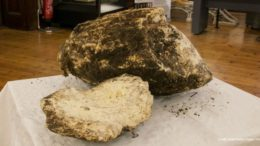 2,000-Year_Preserved_Butter_Irish_peat_Bog_1