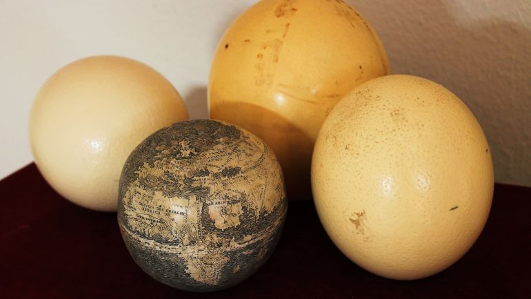 Ostrich_Egg_Globe_Oldest_New_World_3