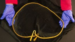 huge-gold-torc-cambridgeshire_1