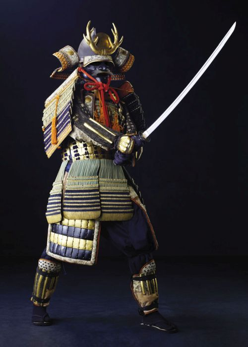 12-warrior-armor-ensembles-history_21