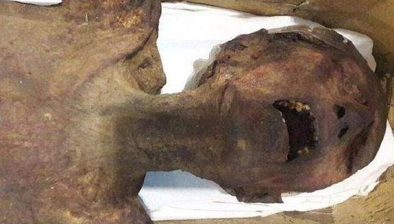 mystery-egyptian-screaming-mummy_1